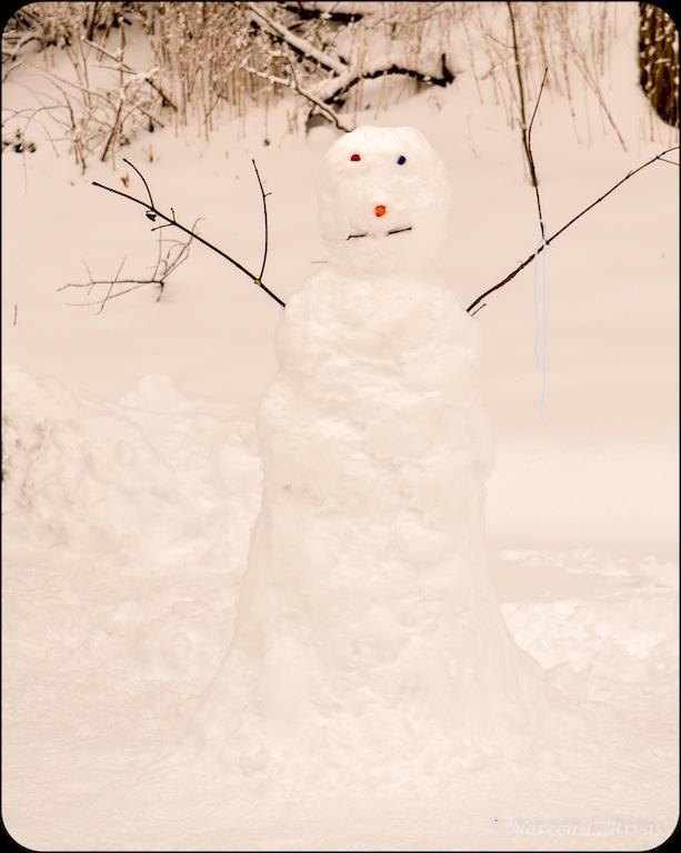 snowman-DSC_2495